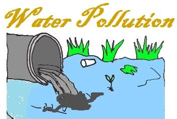 Ocean pollution cause and effect essay